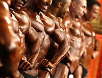 TopRq.com search results: bodybuilding pose